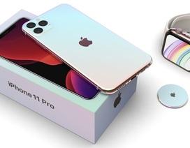 iPhone 11 chính hãng sẽ về sớm trong tháng 10, giá từ 22,9 triệu đồng