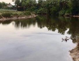 Truy bắt cá sấu xuất hiện sau đợt lũ
