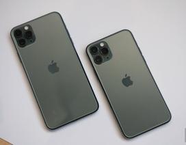 Lộ giá bán iPhone 11 chính hãng tại Việt Nam, rẻ nhất từ 21,99 triệu đồng