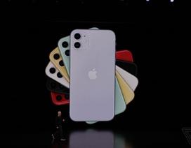 """3 phiên bản iPhone 11 với camera """"khủng"""" trình làng, có 6 màu sắc"""