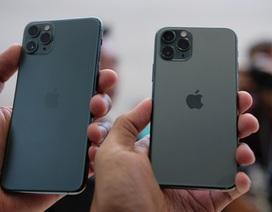 iPhone 11 Pro loạn giá ở Việt Nam, màu xanh rêu sẽ gây sốt