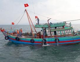 Hà Tĩnh lập Ban chỉ đạo chống khai thác hải sản bất hợp pháp