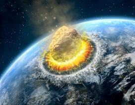 Bằng chứng mới về tiểu hành tinh giết chết khủng long