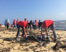 """Quảng Bình: 1.000 bạn trẻ tham gia chiến dịch """"Hãy làm sạch biển - Tử tế với đại dương"""""""