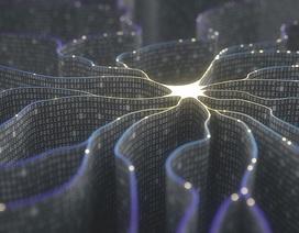 Mô hình nơ ron sinh học đặc biệt có khả năng bắt chước như não người