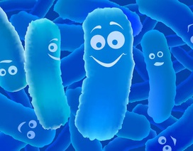 Tác dụng vàng của lợi khuẩn cho người viêm đại tràng