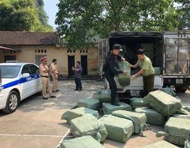 Hơn 5 tấn nầm lợn nhập lậu Trung Quốc chảy nước hôi thối bị bắt giữ