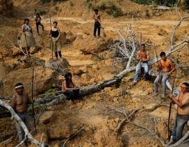 """Thảm cảnh của thổ dân rừng Amazon khi """"lá phổi xanh"""" ngày càng teo nhỏ"""
