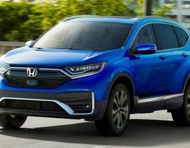 Honda CR-V 2020 loại bỏ cần số, chuyển sang nút bấm