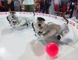 Chú chó robot Aibo lần đầu tiên xuất hiện tại Việt Nam