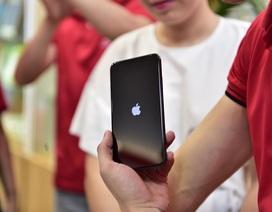 """IPhone 11 """"xách tay"""" đã cập bến Hà Nội, giá trên 40 triệu đồng"""