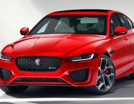 """Jaguar """"lạnh nhạt"""" với phân khúc SUV"""