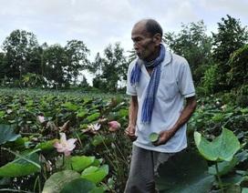 Đại tá phi công Nguyễn Văn Bảy qua đời: Nhớ mãi người anh hùng áo vải lội đồng bắt cá, trồng sen…