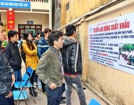 Bắc Giang: 2.253 lượt lao động được tư vấn việc làm trong quý 1/2019