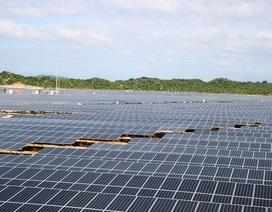 Áp dụng chung một giá mua điện mặt trời: Sẽ mất cân đối nghiêm trọng các dự án ở 3 miền