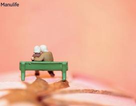 Tuổi về hưu – thời thanh xuân trở lại?