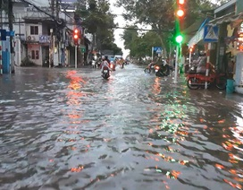 Triều cường dâng cao, đường phố Cần Thơ, Vĩnh Long lênh láng nước