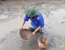 Về quê trải nghiệm lội bùn bắt cá, tôm ngày nghỉ Tết
