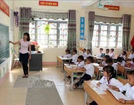 Cô giáo tâm sự: Vui, buồn với cuộc thi Giáo viên giỏi