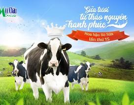 Hành trình vượt khó trong thị trường sữa Việt Nam 2018