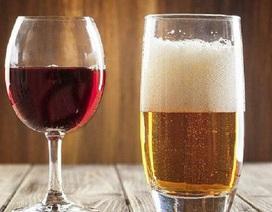 Bia không thể giải độc mọi loại rượu!