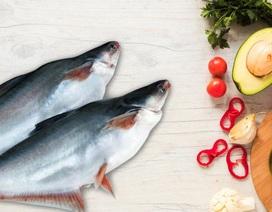 Dầu ăn 100% từ cá - Sản phẩm chất lượng cho người Việt