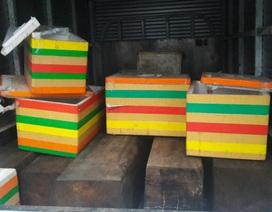 Xe tải ngụy trang gỗ không rõ nguồn gốc bằng thùng xốp