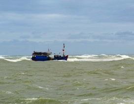 Ngư dân Bình Định cứu 2 người nước ngoài trôi dạt trên biển