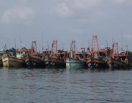 Hơn 3.500 tàu cá Phú Quốc vào bờ tránh bão