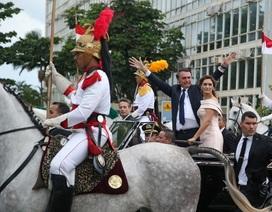Ngựa chiến gây náo loạn lễ diễu hành nhậm chức của tân Tổng thống Brazil