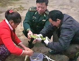 Cứu sống người đàn ông ăn lá ngón bằng phương thuốc dân gian