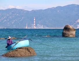 Thủ tướng trả lời việc nhận chìm bùn thải từ cảng than nhiệt điện