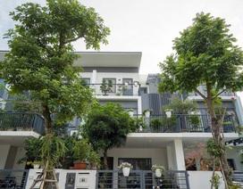 Mua Dahlia Homes – KĐT Gamuda Gardens trước Tết, nhận ưu đãi hấp dẫn