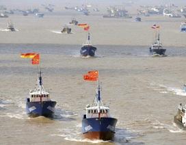 Cơn khát hải sản và cuộc chiến của tàu cá Trung Quốc trên các đại dương