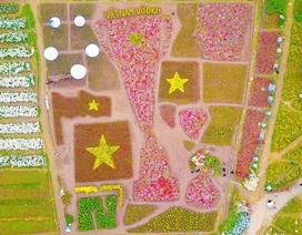 Vườn hoa hình cúp vô địch khổng lồ cổ vũ đội tuyển Việt Nam
