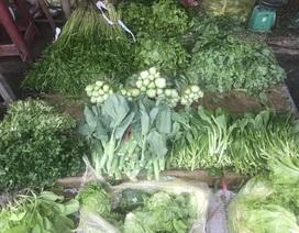 Chưa rét đậm rét hại, giá rau củ đã tăng gấp đôi