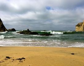 Tỷ phú bỏ 37 triệu USD mua bãi biển rồi bịt lối đi của dân nhận kết đắng