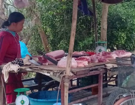 Xuất hiện dịch lở mồm long móng tại Thanh Hóa