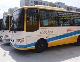 Đà Nẵng: Tạm dừng tuyến xe buýt miễn phí, nhiều lái xe thất nghiệp dịp cận Tết