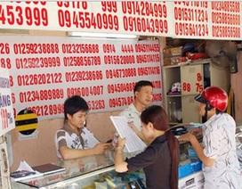 Bộ TT&TT mở đợt thanh tra diện rộng SIM rác của các nhà mạng