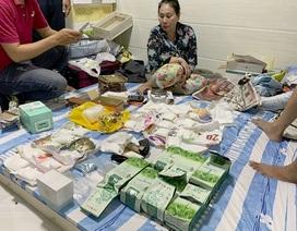 Con rể, con nuôi giúp mẹ điều hành đường dây ma túy ở Sài Gòn