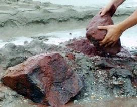 Hà Tĩnh đề nghị đẩy nhanh tiến độ trình Bộ Chính trị dừng dự án sắt Thạch Khê