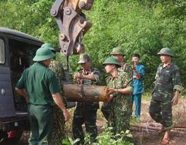 Phát hiện quả bom nặng 230kg còn sót lại sau chiến tranh