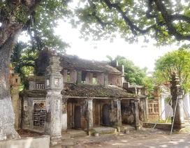 Ngôi chùa cổ có 2 cây di sản đầu tiên ở Ninh Bình