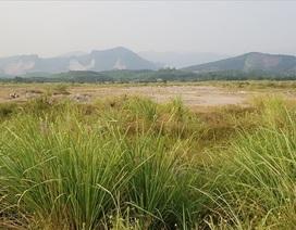 """Mở rộng Hạ Long: """"Cò"""" đất """"thổi"""" giá, chính quyền phát loa cảnh báo"""