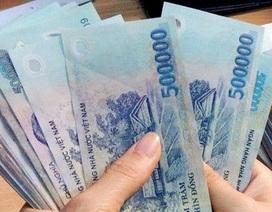 Cà Mau: Hơn 250 doanh nghiệp nợ 113 tỷ tiền đóng BHXH