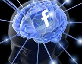 Mark Zuckerberg tham vọng có thể đọc trí não của con người