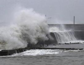Một thủy thủ Việt Nam trong vụ chìm tàu trên vịnh Tokyo được cứu sống