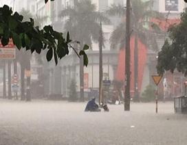 """Mưa như trút, nước dâng cao cả mét, thành Vinh """"thất thủ"""""""