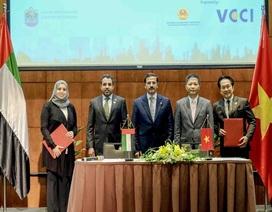 """Việt Nam có thể đẩy mạnh kết nối với Trung Đông qua """"Con đường Tơ lụa Dubai"""""""